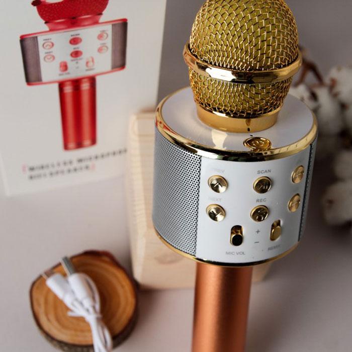 خرید پستی میکروفون اسپیکردار